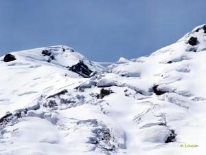 雪崩れの巣