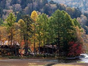 長蔵小屋の秋